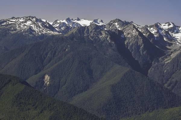 Photograph - Mount Olympus Washington by NaturesPix
