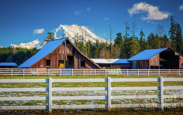 Wall Art - Photograph - Mount Rainier Barns by Inge Johnsson
