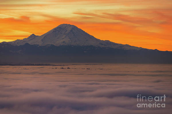 Seattle Skyline Photograph - Mount Rainier Sunrise Light Above The Fog by Mike Reid