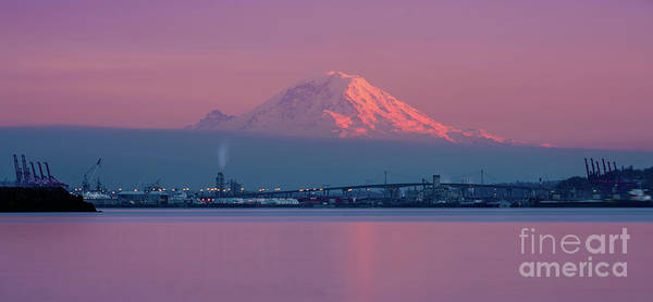 Seattle Skyline Photograph - Mount Rainier Sunset Reflection by Mike Reid