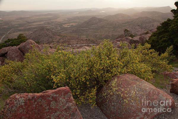 Wall Art - Photograph - Mount Scott Springtime by Iris Greenwell