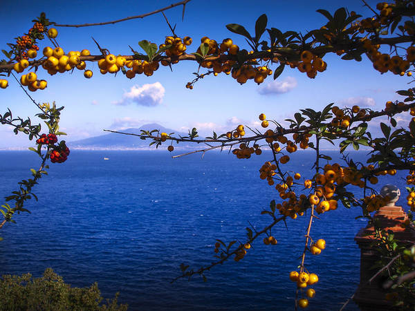 Photograph - Mount Vesuvius From Sorrento by Jed Holtzman