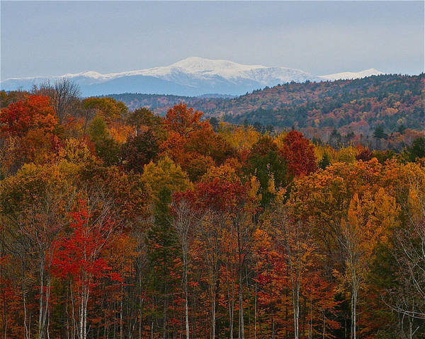 Photograph - Mount Washington From A Distance by Jeremy McKay