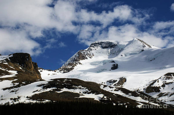 Wall Art - Photograph - Mount Wilcox Jasper National Park by Bob Christopher