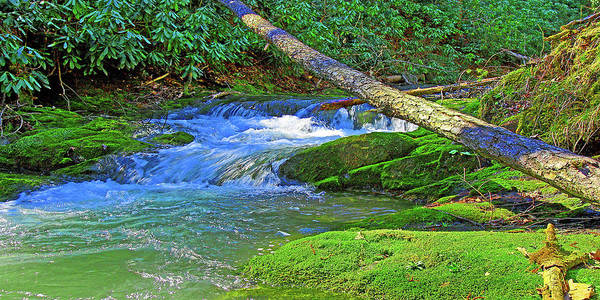 Photograph - Mountain Appalachian Stream by The American Shutterbug Society