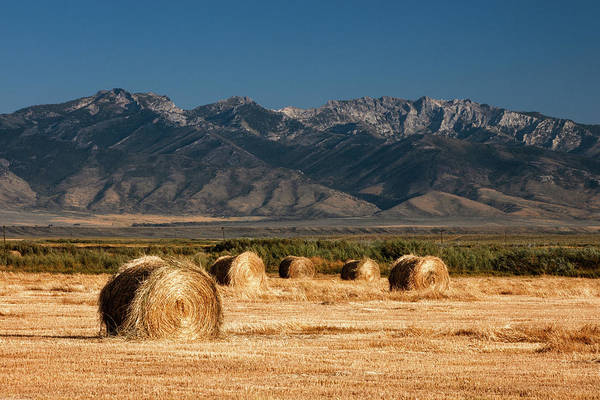 Photograph - Mountain Bales by Todd Klassy