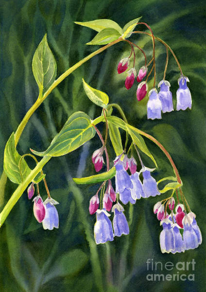 Up North Painting - Mountain Bluebells With Background by Sharon Freeman