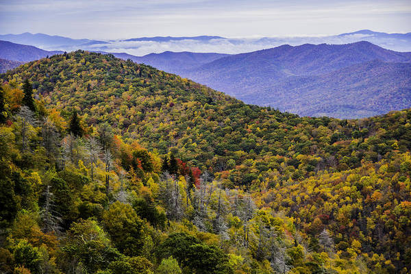 Photograph - Mountain Fall Leaf Colors by Allen Nice-Webb