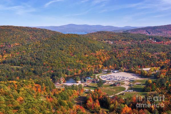 Photograph - Mountain Foliage II by Sharon Seaward