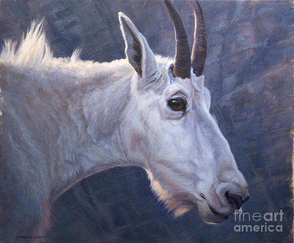 Painting - Mountain Goat Study by JQ Licensing