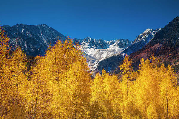 Wall Art - Photograph - Mountain Gold by Andrew Soundarajan