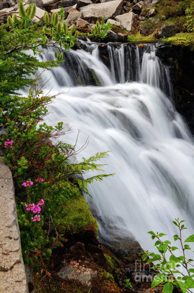 Wall Art - Photograph - Mountain Heather Falls by Mike Dawson