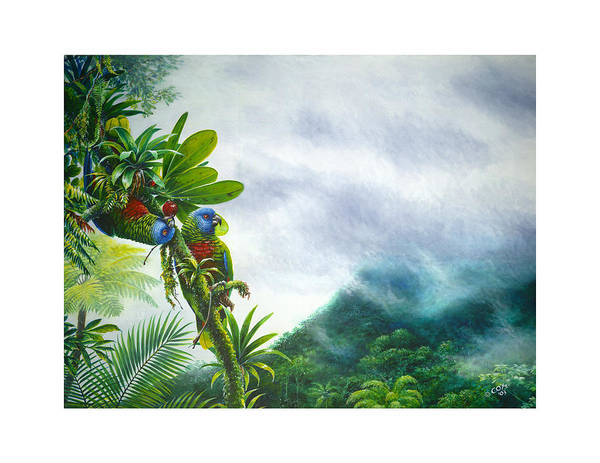 Painting - Mountain High - St. Lucia Parrots by Christopher Cox