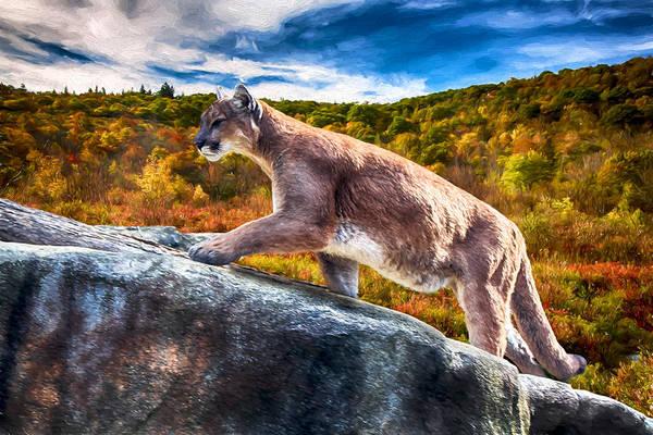 Puma Digital Art - Mountain Lion On The Prowl by John Haldane