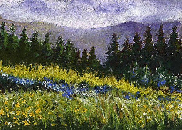 Painting - Mountain Meadow by David Patterson
