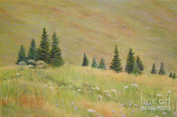 Painting - Mountain Meadow by Lynn Quinn