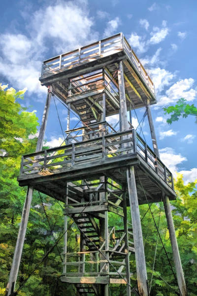 Washington County Wall Art - Painting - Mountain Park Lookout Tower On Washington Island Door County by Christopher Arndt