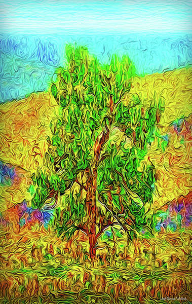 Digital Art - Mountain Pine Solitude by Joel Bruce Wallach