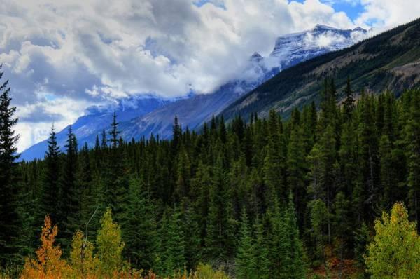 Photograph - Mountain Ranges South Of Jasper II by Wayne Moran