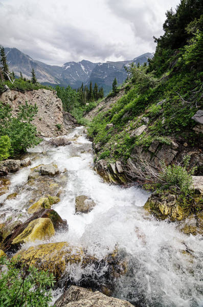 Photograph - Mountain River by Margaret Pitcher