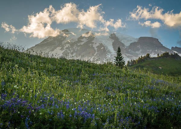 Photograph - Mountain Side by Kristopher Schoenleber