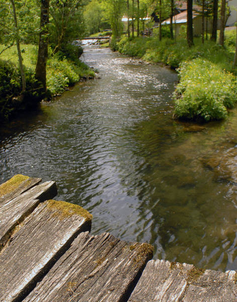 Village Creek Photograph - Mountain Stream by Don Wolf