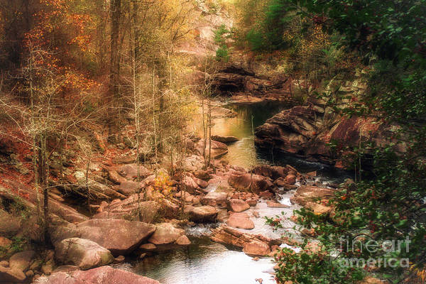 Photograph - Mountain Stream by Mechala Matthews