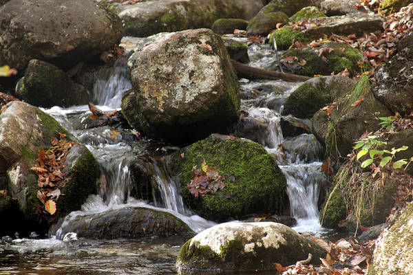 Photograph - Mountain Stream Through Rocks by Emanuel Tanjala