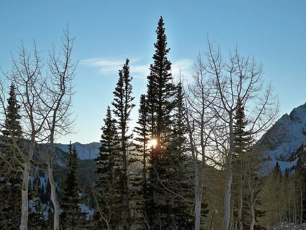 Photograph - Mountain Sunset by Michael Cuozzo