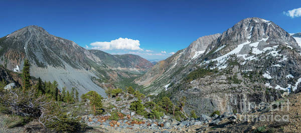 Tioga Photograph - Mountain View From Tioga Road by Michael Ver Sprill