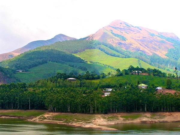 Kerala Photograph - Mountain View by Art Spectrum