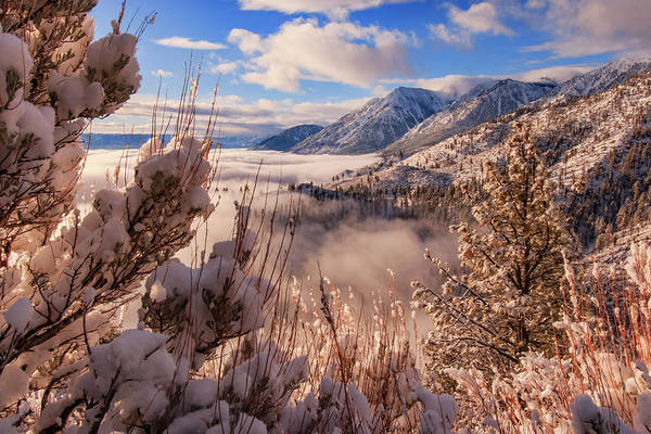 Lightroom Photograph - Mountain Winter Inversion Dream by Mike Herron