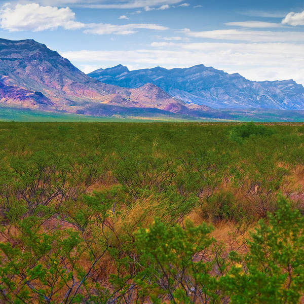 Photograph - Mountains And Valleys by Ryan Heffron