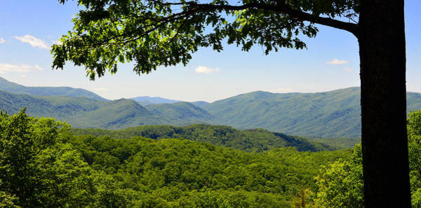 Wall Art - Photograph - Mountains Of Green by David Lee Thompson