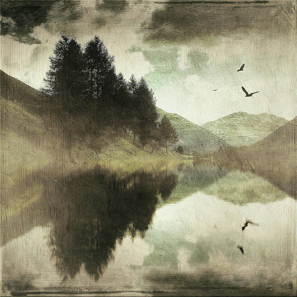 Photograph - Mountainscape With Birds by Roberto Pagani
