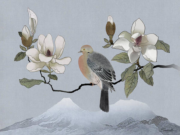 Wall Art - Digital Art - Mourning Dove And Magnolia by M Spadecaller