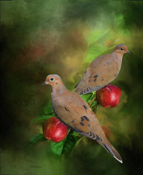 Painting - Mourning Doves On The Apple Tree - Painting by Ericamaxine Price