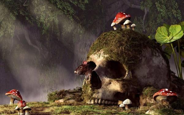 Wall Art - Digital Art - Mouse In A Skull by Daniel Eskridge