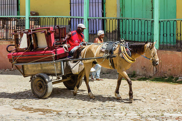 Photograph - Moving Day In Trinidad by Dawn Currie
