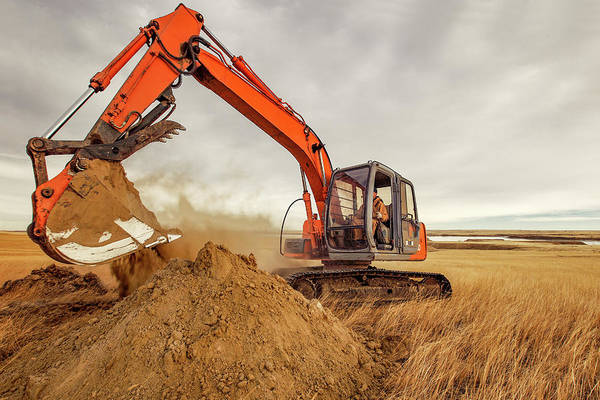 The Crane Photograph - Moving Earth by Todd Klassy