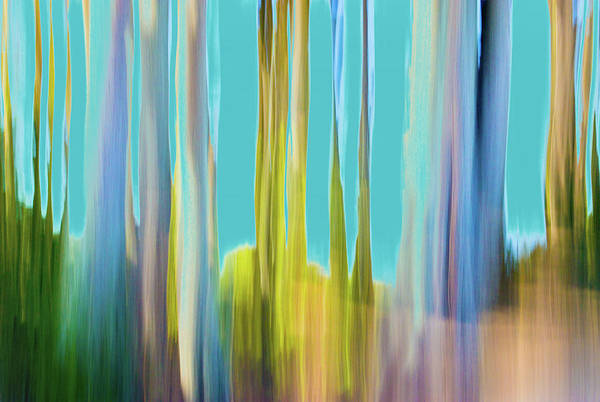 Digital Art - Moving Trees 20 Carry-on Landscape Format by Gene Norris
