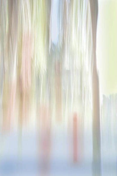 Digital Art - Moving Trees 35 Portrait Format by Gene Norris