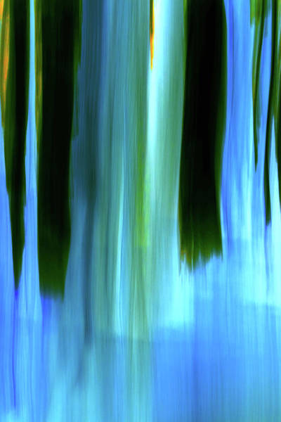 Digital Art - Moving Trees 37-05 Portrait Format by Gene Norris