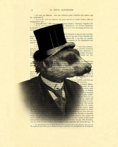 Animals In Clothes Wall Art - Digital Art - Meerkat Portrait In Black And White by Madame Memento
