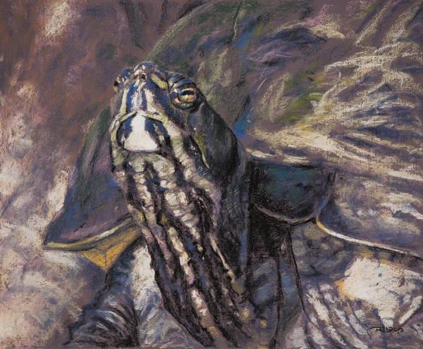 Pastel - Mr. Ross by Christopher Reid