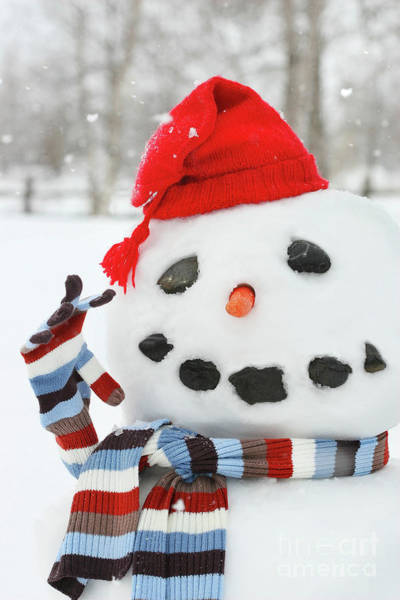 Joyous Photograph - Mr. Snowman by Sandra Cunningham