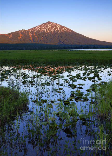 Wall Art - Photograph - Mt. Bachelor Sunset by Mike Dawson