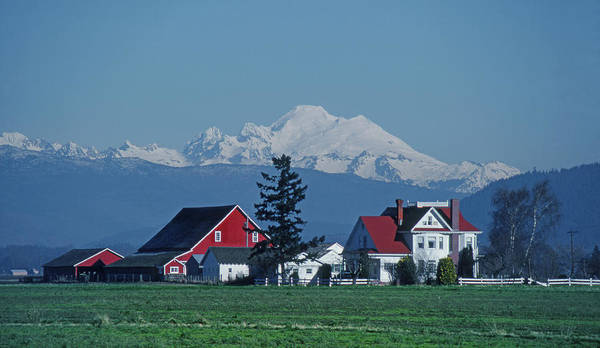 Photograph - M-a4311-mt. Baker And Farmhouses  by Ed  Cooper Photography