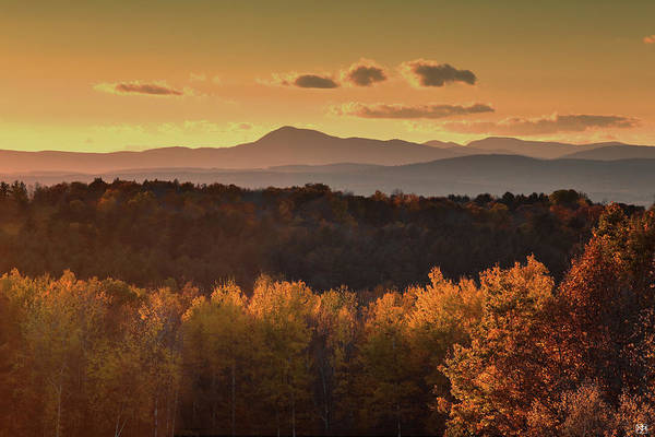 Photograph - Mt Blue In Gold by John Meader