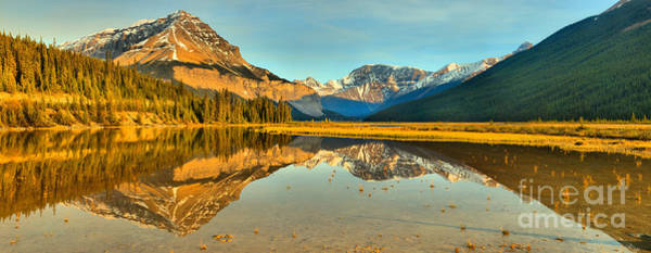 Photograph - Mt Chephren Golden Reflections by Adam Jewell
